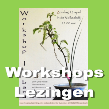 workshops lezingen